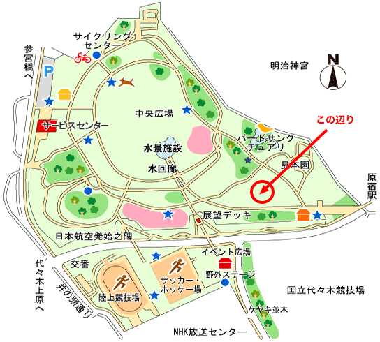 ( C ) 公益財団法人 東京都公園協会 / ( C ) 代々木公園 ピザ回し練習会